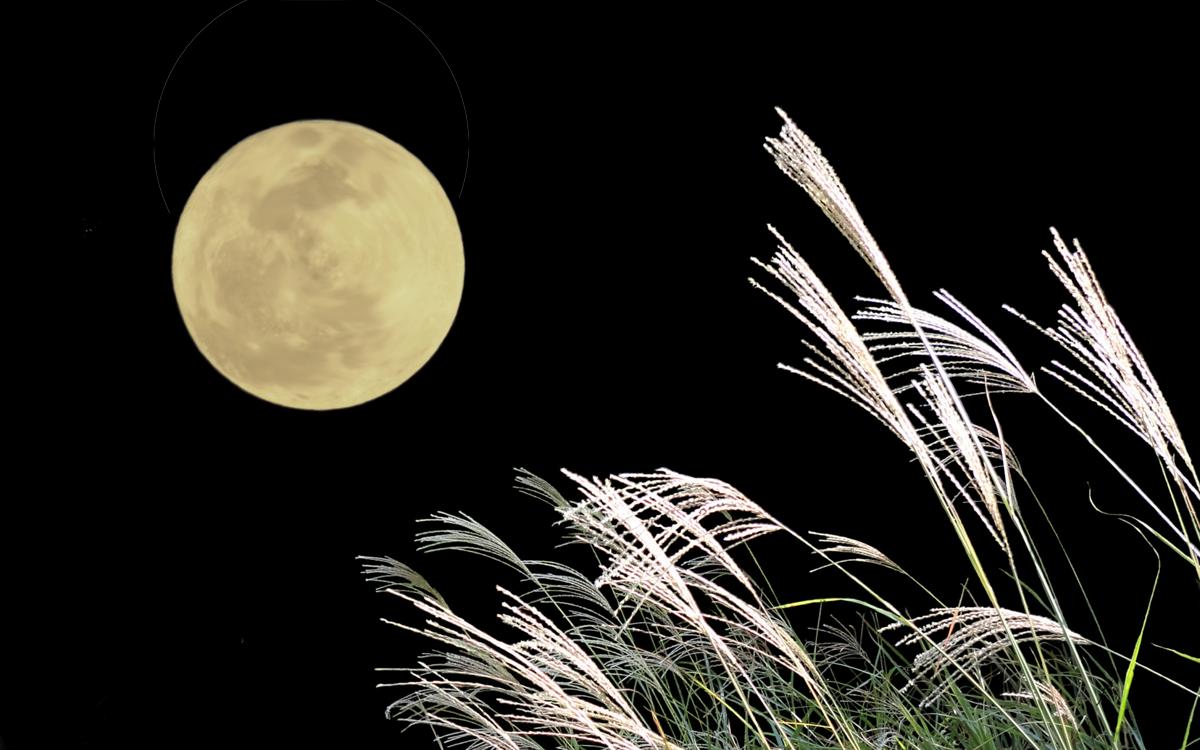 中秋 の 名 月 と は